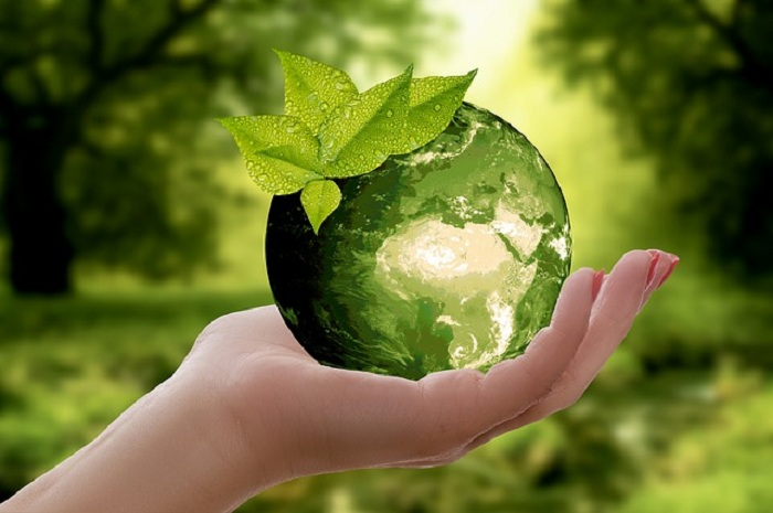 Hand with round earth, Environment-1