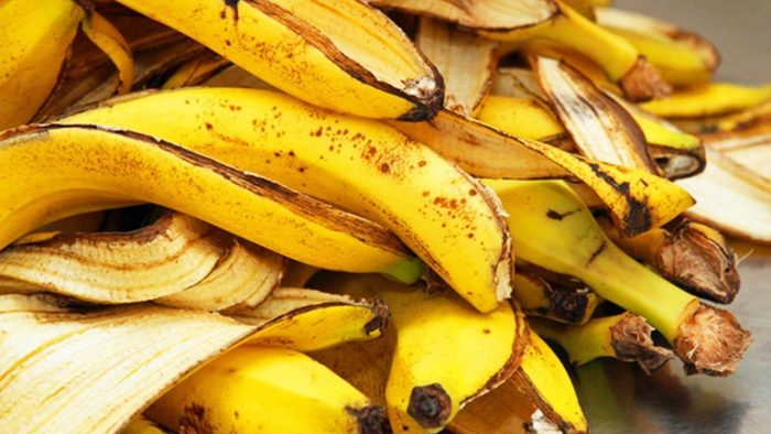 a bunch of banana peels